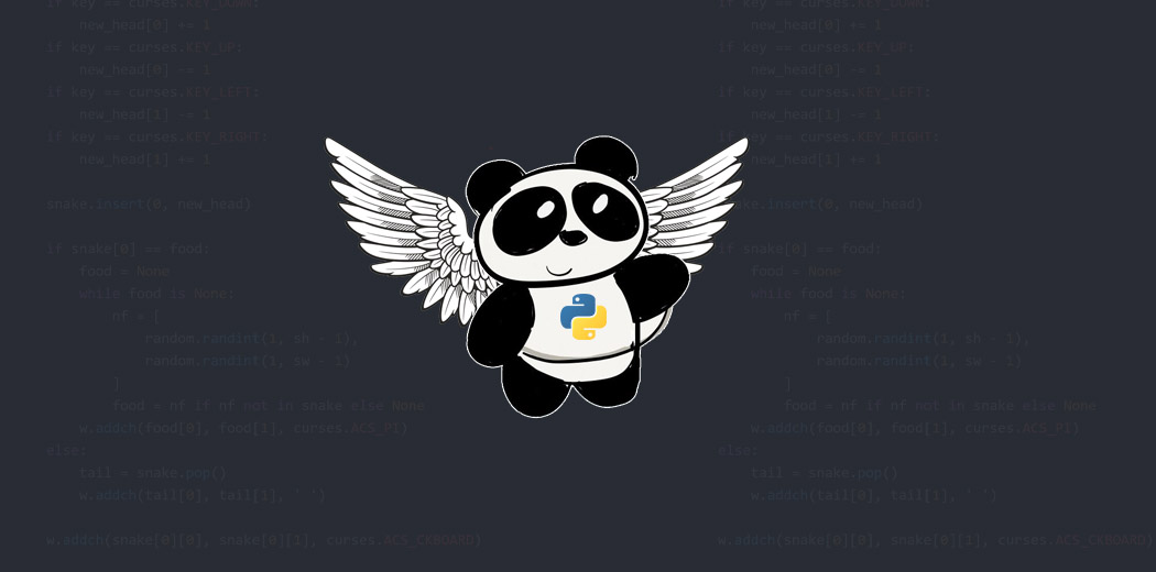 Using Pandas in Python for Data Preprocessing | Speed up Pandas