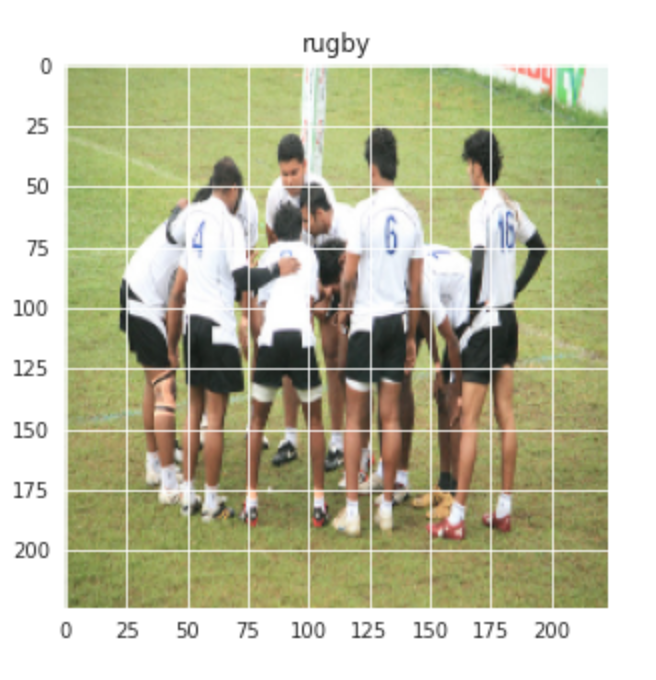 Image Classifier - rugby