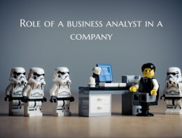 What is A Business Analyst and What is the Role of a business analyst in a Company?